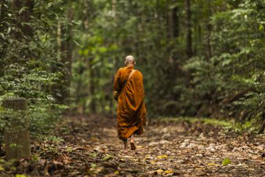 monaco_nella_foresta
